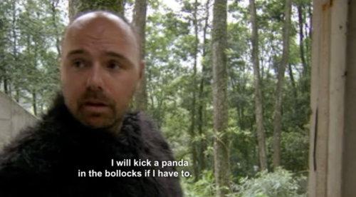 pilk-panda